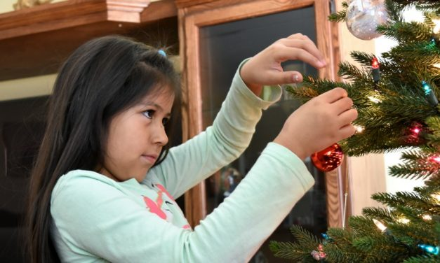 Christmas season is over…now what?
